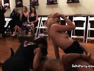 Slutty Belt Babes Go On A Haughty Threesome